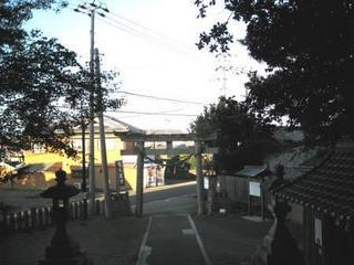 019-1.JPG