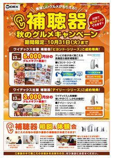 2017_91011gatu_ga_ura_meganenofuji_0809ol.jpg