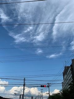 IMG_3875.JPG